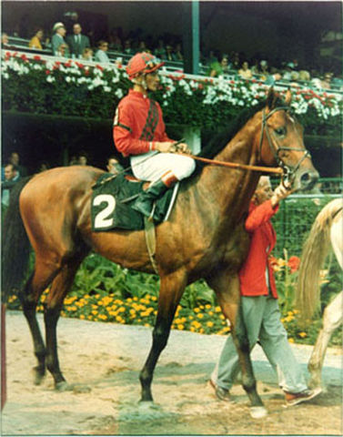 Dr Fager 1