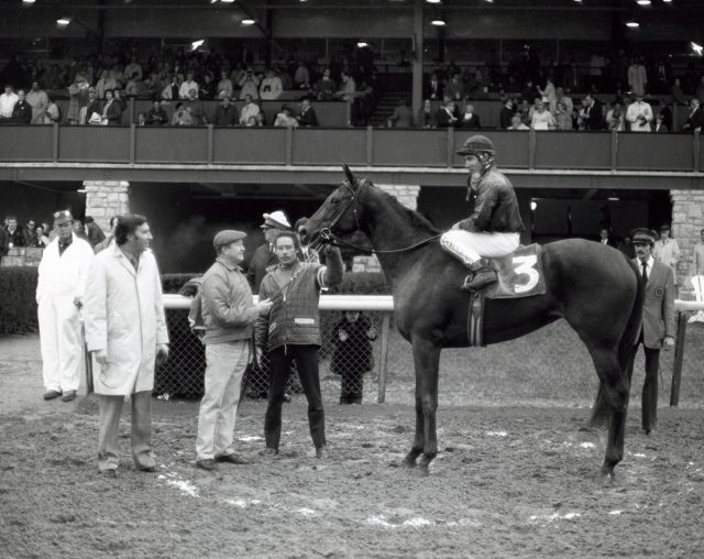 Numbered Account; Laffit Pincay, Jr - up; Owner Odgen Phipps; Trainer Roger Laurin